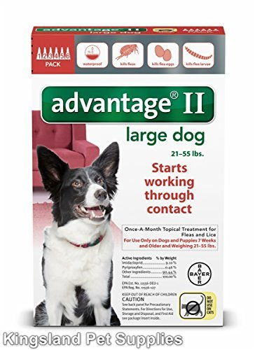 Bayer Advantage Ii  Large Dogs  21 To 55Pound  6Month