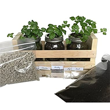 Indoor Herb Garden Kit -Great for Growing an Indoor Herb Garden -100% Satisfaction Guaranteed, Includes Everything You Need to Grow a Herb Garden (Cilantro, Thyme, Basil,Parsley) in a Simple Container