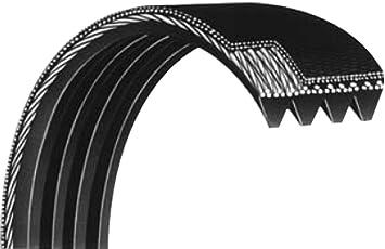 Courroie Striée 560pj4 Dents élastique Pour Bétonnière Marque Looxe Exigez La Qualité