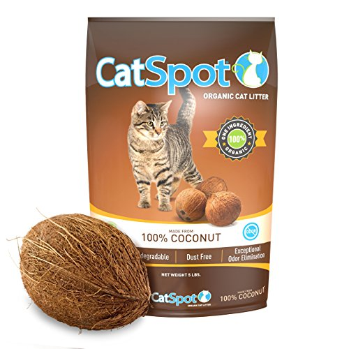 Shell Half Coconut (CatSpot Litter, 100% Coconut Cat Litter: All-Natural, Lightweight & Dust-Free. Non-Clumping (1 Bag))