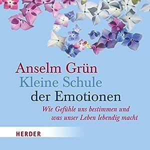 Kleine Schule der Emotionen Hörbuch