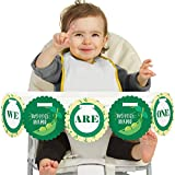 Big Dot of Happiness Double the Fun - Twins Two Peas in a Pod - We Are One - First Birthday High Chair Banner