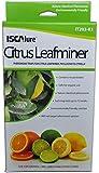 Citrus Leafminer Traps, 3 traps & 3 lures per box