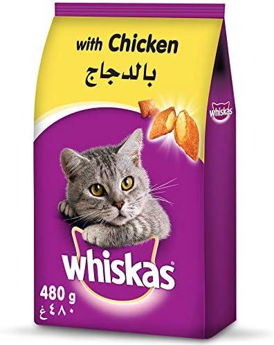 ويسكاس طعام القطط بطعم الدجاج 480 غرام Amazon Ae