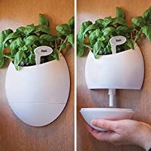 Bits and Pieces - Self Watering Wall Planter Urn - Wall Hanging Herb Pot - Comes with Plant Stake and Identification Tags