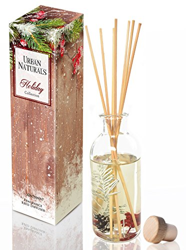 Urban Naturals Winter Mint Peppermint Essential Oil Reed Diffuser Sticks Set by Peppermint Leaf, Spearmint & Eucalyptus Essential Oils | Great Year Round Scent! by Urban Naturals