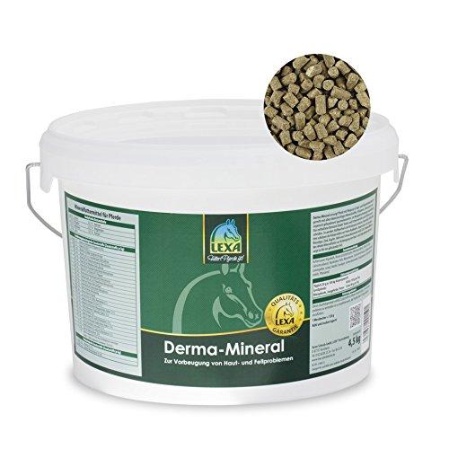 Lexa Derma-Mineral 25 kg