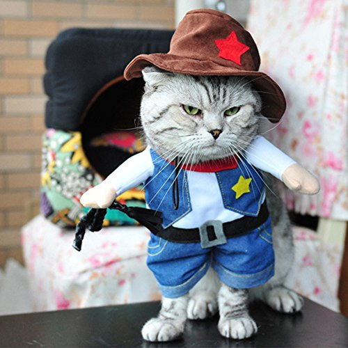 Cats For Costumes Funny (Cute Cat Clothes, Halloween Pet Dress Small Dog Clothes Coat Winter Costume Funny Upright Cowboy Jacket Hat for Cat and)