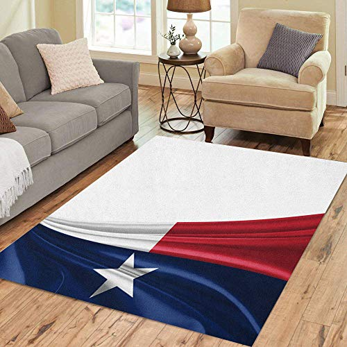 (Pinbeam Area Rug Blue Texan Texas Flag and Red Houston Abstract Home Decor Floor Rug 5' x 7')