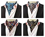 L04BABY Men's Paisley Different Style Ties Silk Jacquard Woven Ascot Set 4 PCS