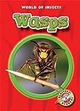 Wasps, Martha E. H. Rustad, 1600140769