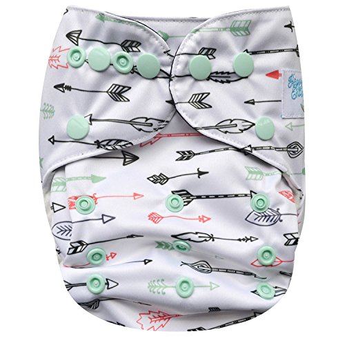 HappyEndings Organic Cotton Contoured All In One (AIO) One Size Baby Cloth Diaper with Pocket (Arrow)