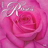 Roses 2018 Wall Calendar