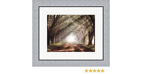 Amazon.com: Evergreen Plantation by Mike Jones Framed Art Print Wall ...