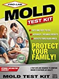 Home & Tools Mold Test Kits Review and Comparison