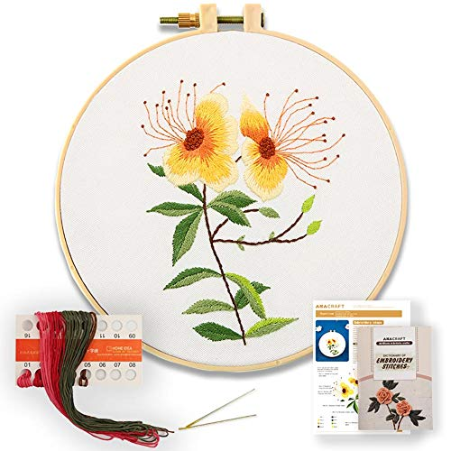 Akacraft DIY Embroidery Starter Kit, Cotton Fibric with Stamped Pattern, 6 inch Plastic Embroidery Hoop, Color Threads, and Needles, Chinese Traditional Flowers Series-Hypericum