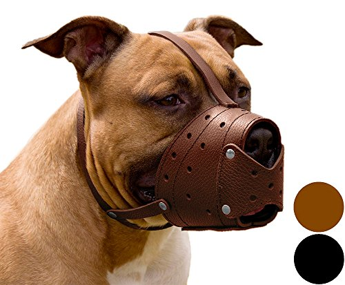 CollarDirect Pit Bull PitBull Terrier Secure Basket Dog Muzzle Genuine Leather Staffordshire Terrier (Brown)