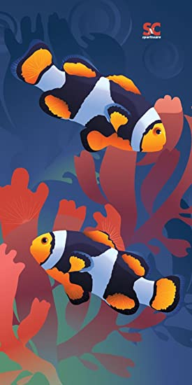 Clownfish Care | Sport N Care Marine Towel Clown Fish Beach Towel 32 X 60 Fan