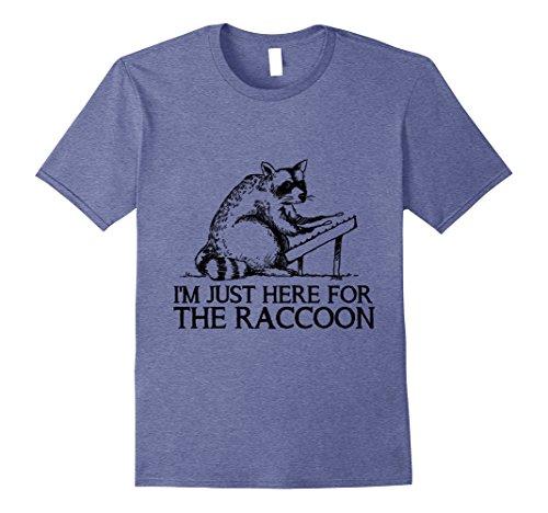 Mens Raccoon & Hammered Dulcimer T-shirt 3XL Heather Blue