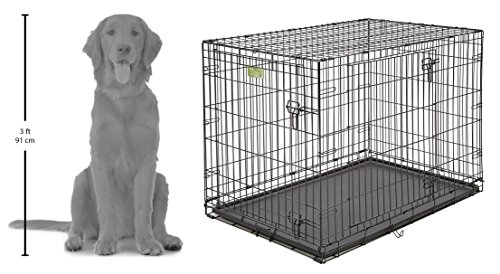 """MidWest iCrate 42"""" Double Door Folding Metal Dog Crate w/ Divider Panel, Floor Protecting """"Roller"""" Feet & Leak-Proof Plastic Tray; 42L x 30W x 28H Inches, Large Dog Breed"""