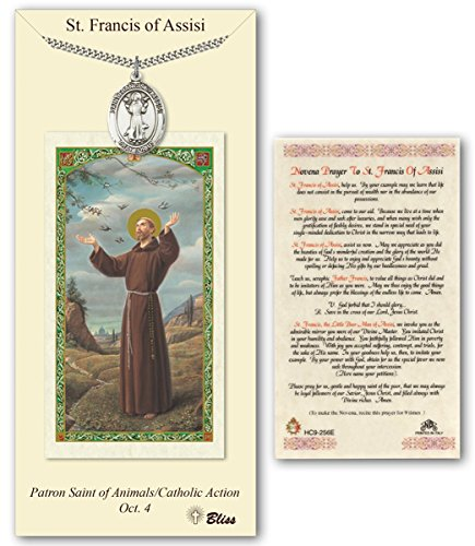 (Pewter Saint Francis of Assisi Medal with Laminated Holy Prayer Card)