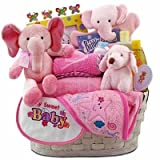 Baby Girl's Precious Gift Basket