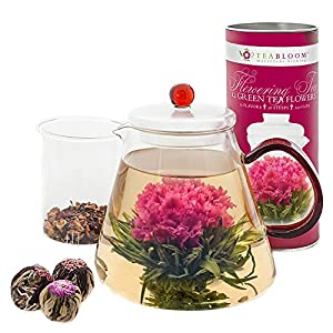 Teabloom Flowering Tea Set - 34 Oz Venetian Red Glass Teapot with Infuser and 12 Blooming Tea Flowers in Gift Canister