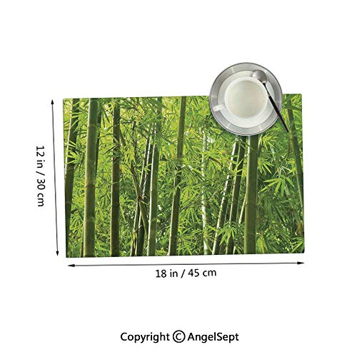 Homenon Placemats for Dining Table Kitchen,Exotic Tropical Bamboo Forest with Fresh Color Asian Nature Wildlife Trees Leaves Decor Green 12x18inches,Outdoor Placemats Set of 4 (Outdoor Australia Furniture Bamboo)