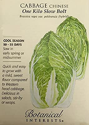 One Kilo Slow Bolt Chinese Cabbage Seeds - 300 mg