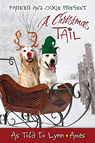 book cover of A Christmas Tail
