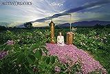 Alteya USDA Organic Face Wash 'BioDamascena' - With Organic Bulgarian Rose Oil, Award-Winning, 250ml