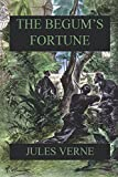 img - for The Begum's Fortune book / textbook / text book