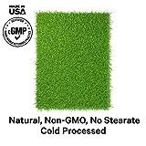 Codeage Grass Fed Beef Kidney Supplement - Freeze