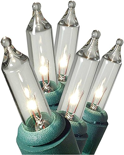 GE String A Long 100 Count Indoor/Outdoor Mini Clear White Holiday Lights Set on Green Wire (2 Pack)