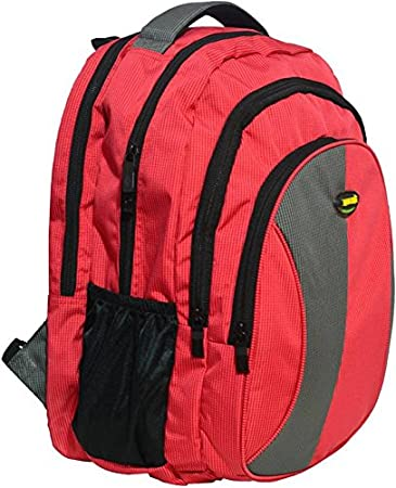 New-Era Polyester 40 Ltr Red-Grey School Backpack: school bags for ...