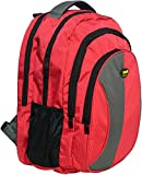 Newera Polyester 40 Ltr Red-Grey School Backpack