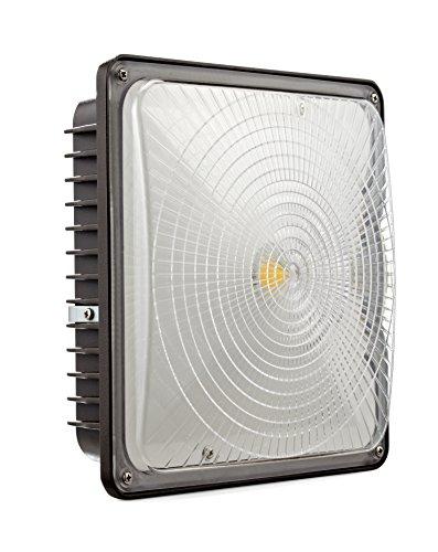 D-Lites 65W LED Canopy Fixture, 5000K, Dark Bronze, 6,700 Lumens, 0-10V Dimmable ()