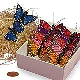 """Assorted Monarch Butterflies, 1-1/2"""""""