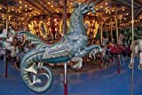 Photo: Carousel in Spring Park,Tuscumbia,Alabama