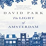 The Light of Amsterdam | David Park
