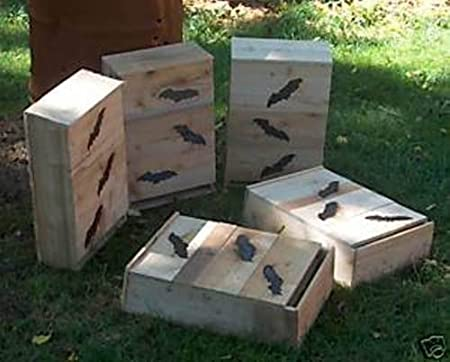 VETS Bat BOX.House.3=TWO Chamber.OHIO.HARD PINE FIRE HARDEN  MADE  BY U.S.A