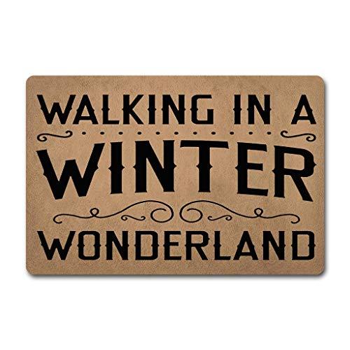 ZiQing Welcome Door Mats Walking in A Winter Wonderland Doormat-Doormat Door Rugs Funny Door Mat (23.6 X 15.7 in) Non-Woven Fabric Top with a Anti-Slip Rubber Back Door Rugs