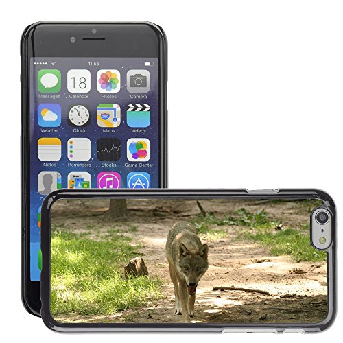 Just Phone Cases Hard plastica indietro Case Custodie Cover pelle protettiva Per // M00127637 Canis Lupus boîtier Zoo // Apple iPhone 6 4.7""