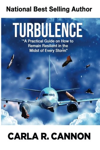 Turbulence: A Practical Guide on How to Remain Resilient in the Midst of Every Storm