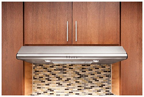Box Exhaust Hood - FHWC3040MS 30 Standard Under Cabinet Hood With 330 CFM External Exhaust Dual Halogen Lights Convertible Exhaust Duct Options Dishwasher-Safe Filters In Stainless Steel
