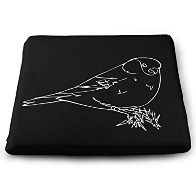 Tinmun Square Cushion, Bird Oriole Chickadee Sparrow Blackbird Large Pouf Floor Pillow Cushion for Home Decor Garden Party: Home & Kitchen