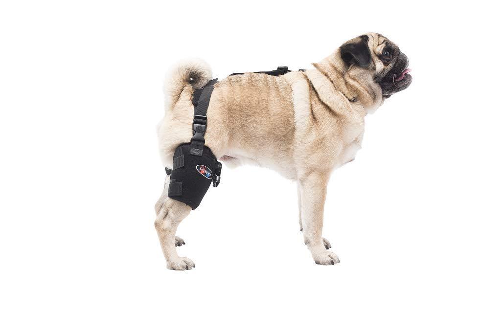 CALDERA Pet Therapy Gel Pack - Tarsal/Stifle - Small by Caldera