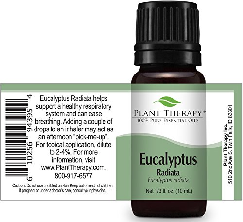Plant Therapy Eucalyptus Radiata Essential Oil