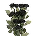 famibay-10pcs-Artificial-Rose-Bouquets-Vantage-Fake-Silk-Rose-Flowers-with-Leaf-and-Plastic-Stem-for-Home-Wedding-Party-Valentines-Day-Garden-Hotel-Decoration-Obsidian
