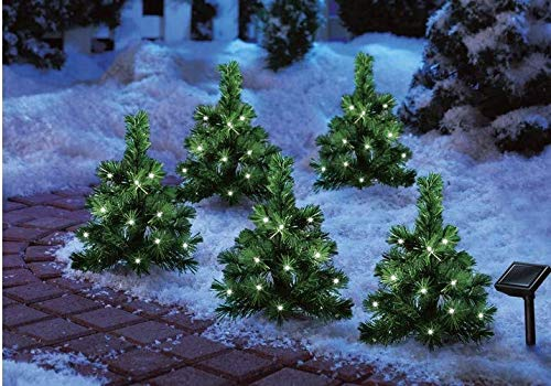 Evergreen Led Lights in US - 8